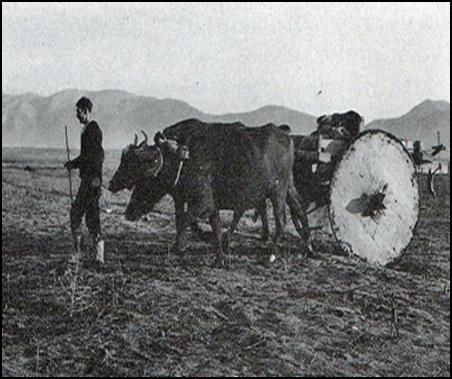Η γεωργία ως επάγγελμα ανά τους αιώνες